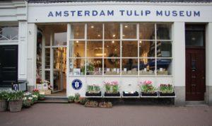 Museu da tulipa Amsterdam